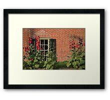 Hollyhocks in the Garden Framed Print