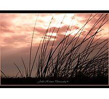 Beach Solitude Photographic Print