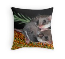 """ Smallest Gliding Mammal in the World "" Throw Pillow"