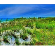 Beach Dune Photographic Print
