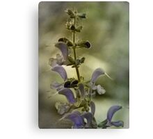 Vintage Flowers Wall Decor Canvas Print
