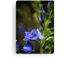 Grunge Blue FLowers #1 Canvas Print