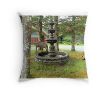 Una fuente...... Throw Pillow