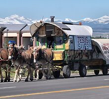 Hoofs and Wagons by Barb Miller
