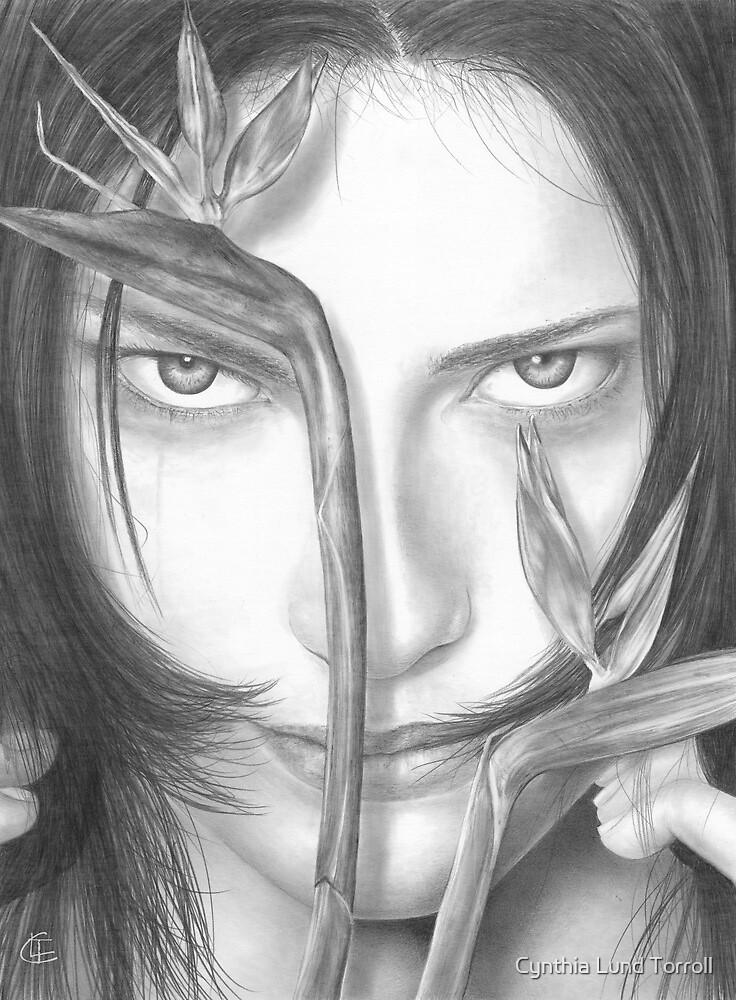 The Illusion by Cynthia Torroll