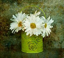 A Pail of Daisies by Barbara Ingersoll