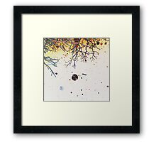 Straight Up In My Tree #1 Framed Print