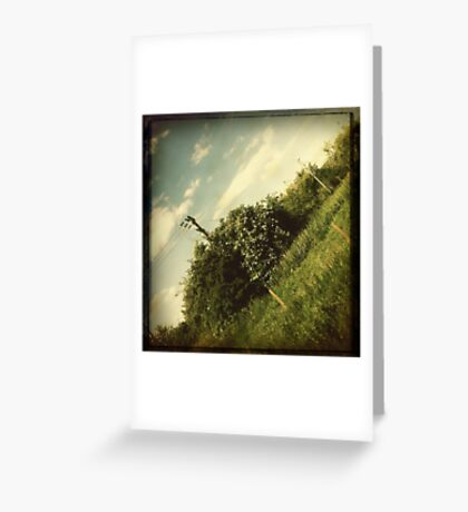 Journey Home #2 Greeting Card