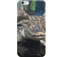 Alligators iPhone Case/Skin