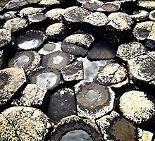 Basalt Formations, Giant's Causeway, Northern Ireland by Lisa Hafey