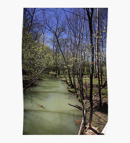 Swamp Lands Poster