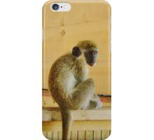 Oliver the Vervet Monkey iPhone Case/Skin