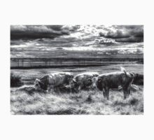 Resting Cows One Piece - Long Sleeve