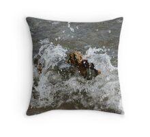 Water splash Lake Ontario Throw Pillow