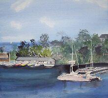 St Lucia Caribbean by Carole Robins