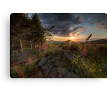 Roseberry Foxgloves II Canvas Print