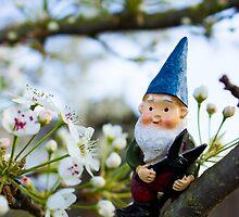 Todd Blossoms by DustysGnomes