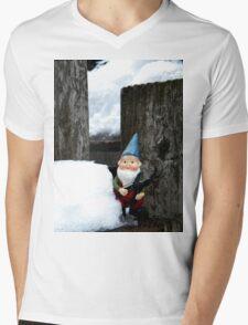 Small Winter Mens V-Neck T-Shirt