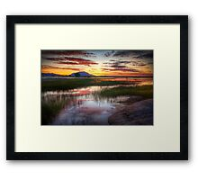 Mellow Out Framed Print