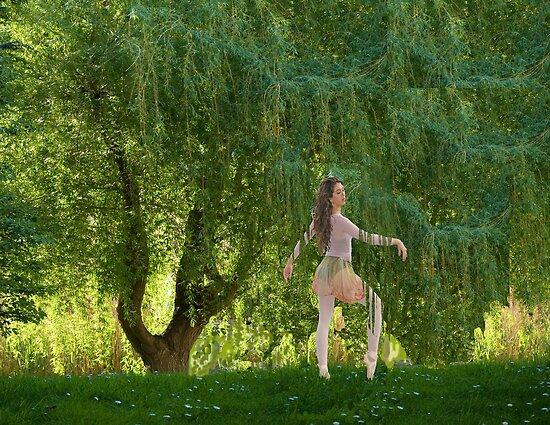 The Willow Ballet by MaureenTillman