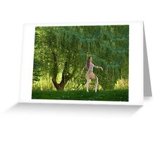 The Willow Ballet Greeting Card