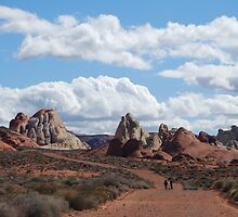 Hiking in The Valley of Fire by Dianne Grist