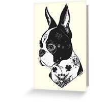 Tattooed Boston Terrier  Greeting Card