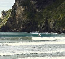 Surfing Nature Taupo Bay  by tonyfoster