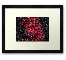 Blossoms ! Framed Print