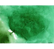 Abstract Green Photographic Print