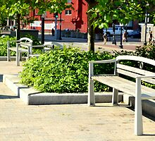 Quaint Little Bench in Boston by mmaccioli