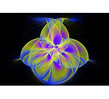 Splits Cylinder Flower Photographic Print
