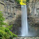 Taughannock Falls by John Banks