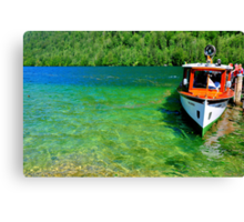 Fresh and green water Canvas Print