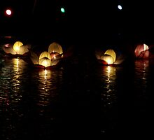 lotus lanterns by Surani Bandara