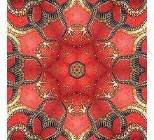 Dragon mandala Photographic Print