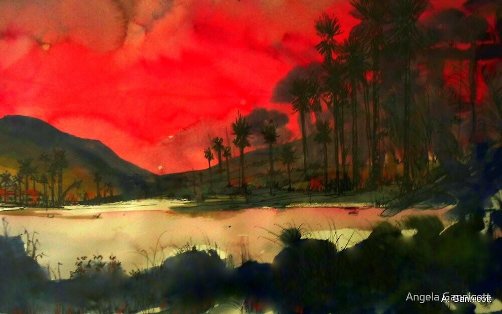 Pacific Sunset by Angela Gannicott