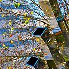 Metal Trees by Ali Brown