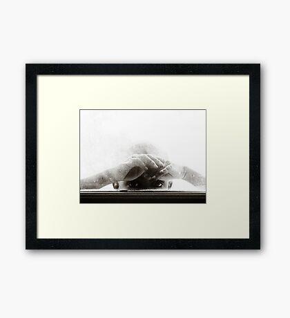 Sneak a Peek! Framed Print