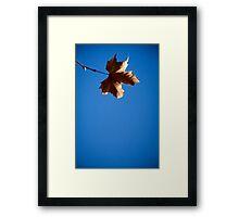leafing me feeling blue Framed Print
