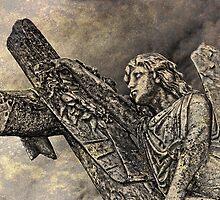 Fallen Angel  by Selina Ryles