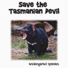 save the Tasmanian Devil by Martin Pot