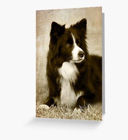 Soccer Dog 2 - border collie Greeting Card