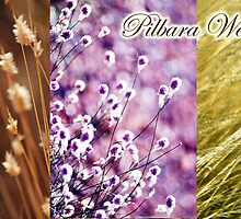 Pilbara Weeds by oddoutlet