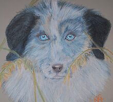 Baby's got Blue eyes by Nicole Gibson