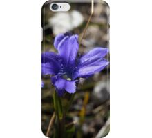 Fringed Gentian iPhone Case/Skin