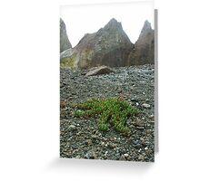 The survival instinct - White Island Greeting Card
