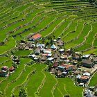 2000-year old Batad Rice Terraces, Philippines by Andrew & Mariya  Rovenko
