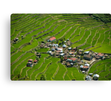 2000-year old Batad Rice Terraces, Philippines Canvas Print