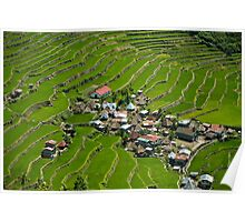 2000-year old Batad Rice Terraces, Philippines Poster